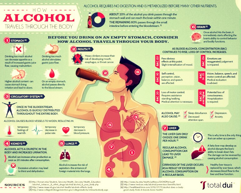 the two harmful effects of alcohol to the body The heart is extremely vulnerable to the negative effects of alcohol consumption over time, heavy drinking can weaken the heart, impacting how oxygen and nutrients are delivered to other vital organs in your body.
