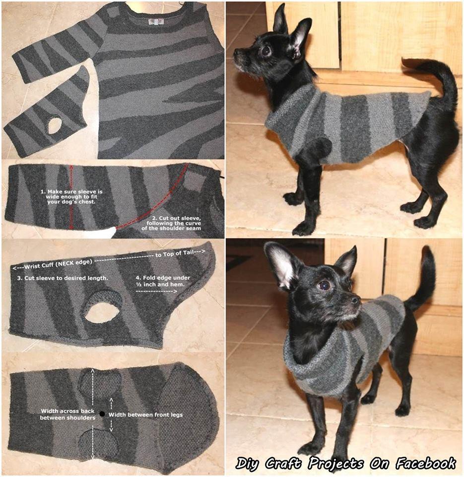 Как сделать одежду для щенков