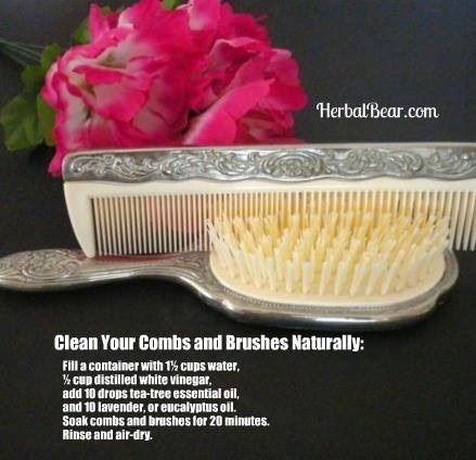 Clean Hair Brushes Naturally