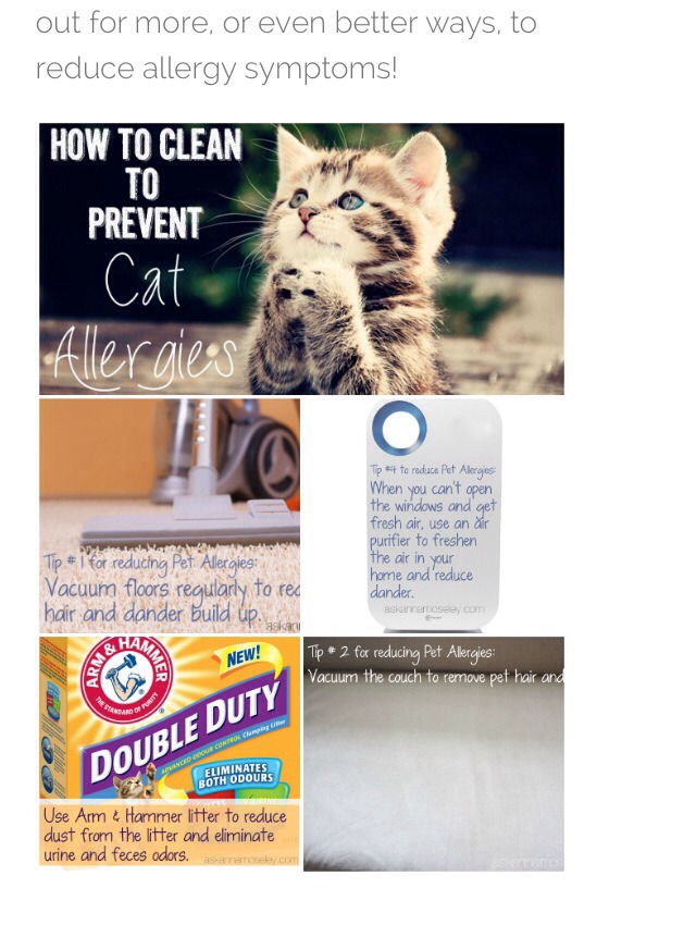 · How to Clean Your Cat's Ears. In this Article: Article Summary Inspecting Your Cat's Ears Cleaning the Ears Community Q&A 17 References. Most cats do a great job of keeping their own ears clean%().