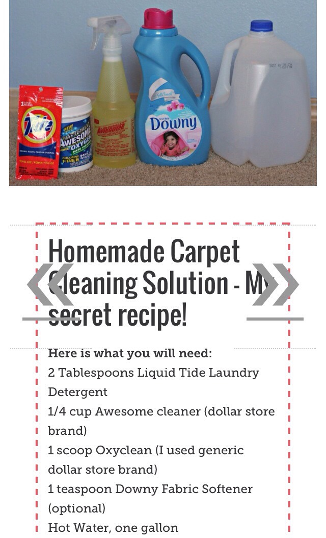 diy carpet cleaning solution. Black Bedroom Furniture Sets. Home Design Ideas