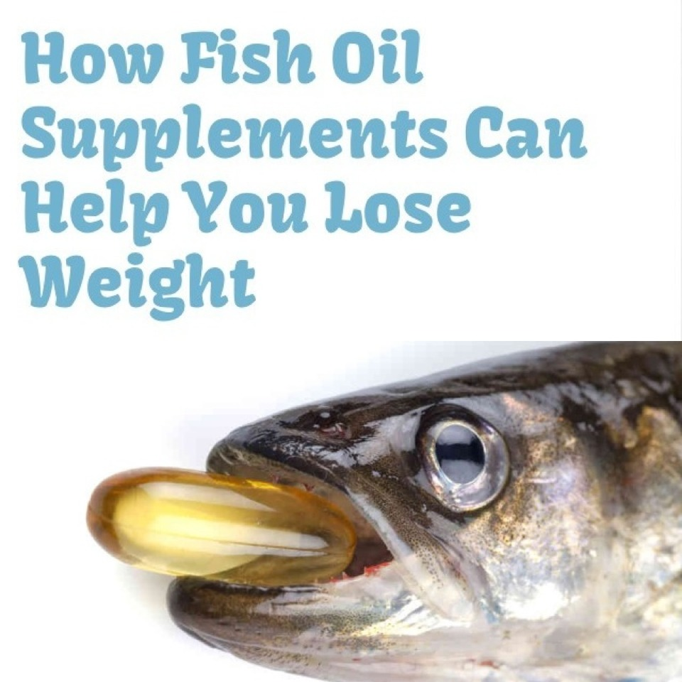 How Fish Oil Supplements Can Help You Lose Weight Musely