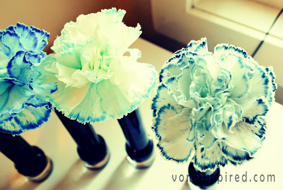 Dye flowers musely for Food coloring roses