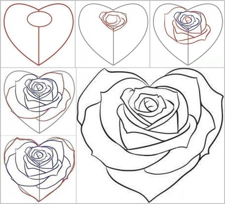 Как нарисовать розу своими руками поэтапно 17