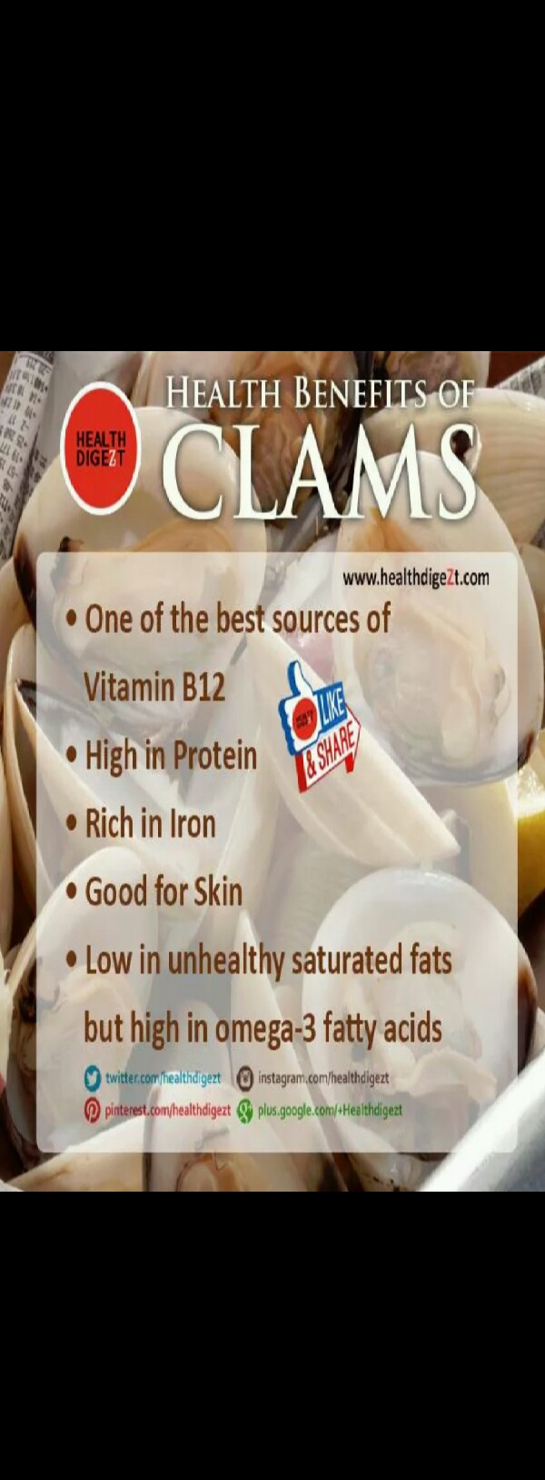 R Clams Good For U Why Clams Are Good For...
