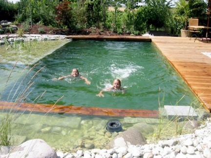 Natural Swimming Pool Natural Oasis Musely