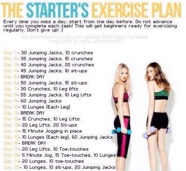 Exercise Plan For Beginners