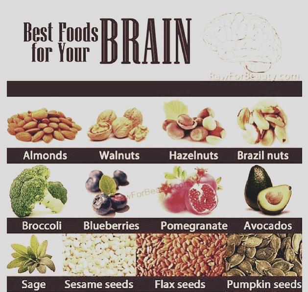the best foods for your brain musely
