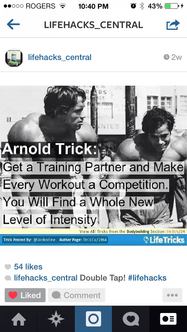 rowdy and arnold relationship tips
