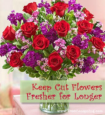 How to keep your cut flowers fresher longer musely - Ways to make your flowers last longer ...
