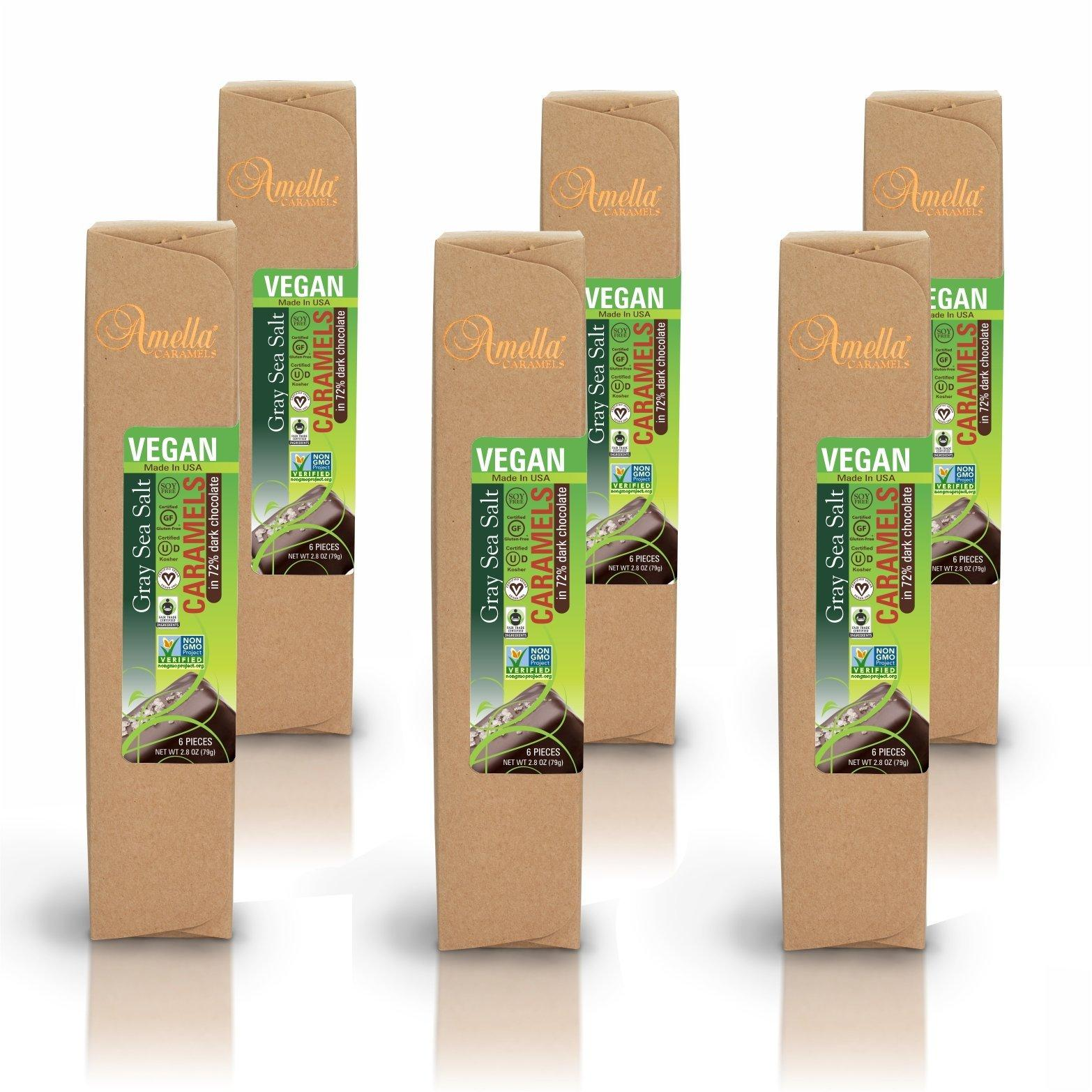 Vegan Gray Salt Caramels in 72% Dark Chocolate, 16.8 ounces (6 packs - 6 pcs/pack)