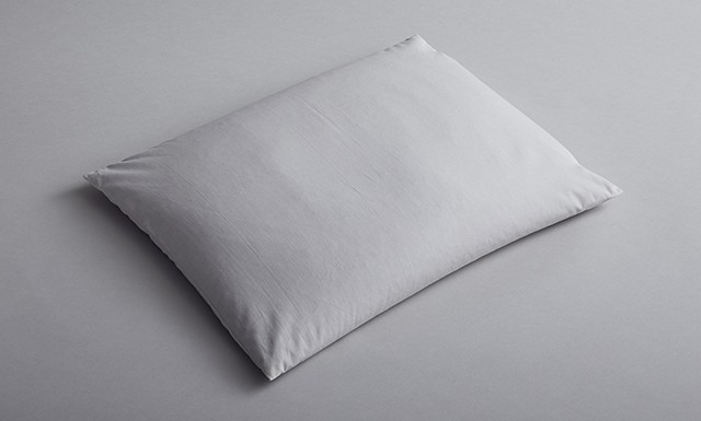 Slumbr Ara Buckwheat Pillow