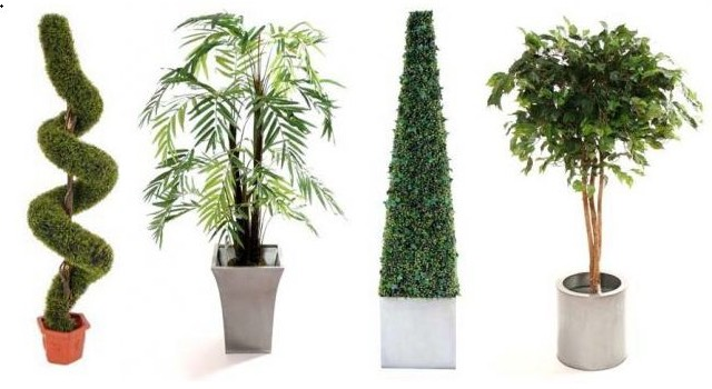 Fake Plants We're not saying your friends will 100% for sure judge you for populating your house with plastic imposter plants, but they'll probably judge you. Go for some real houseplants with real health benefits.