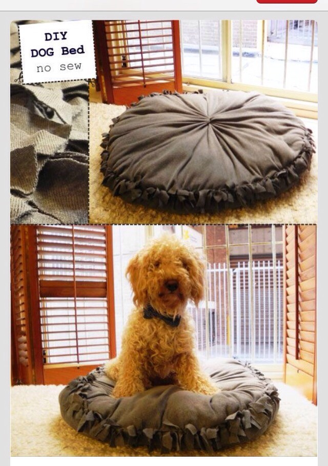 Diy Easy No Sew Pet Bed By Jamie Strange Musely