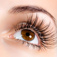 Apply Vaseline to eyelashes. This will help stimulate growth and overtime you will see results. You can also apply Vaseline under your eyes to reduce dark circles.