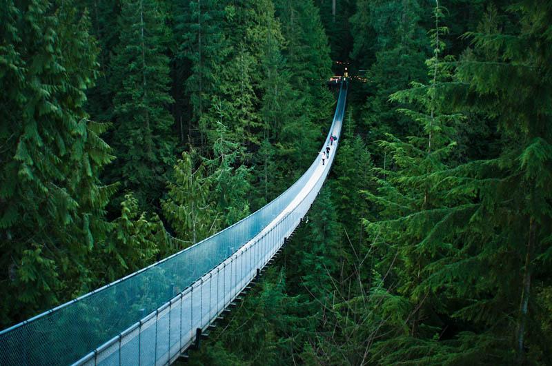 Capilano Suspension Bridge; District of North Vancouver, Canada