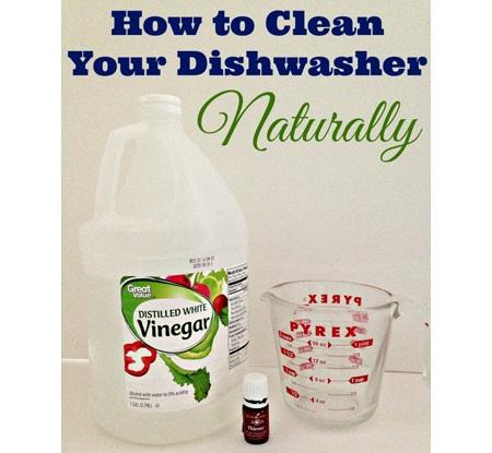 place a dishwasher-safe measuring cup with two cups of white vinegar on the top rack of the dishwasher. If you're an essential oil user like myself add five drops of Essential Oil blend for added sanitation.
