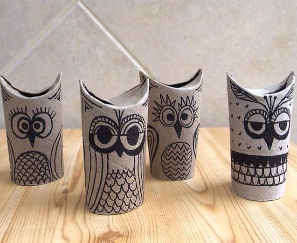 Little owls 🐦