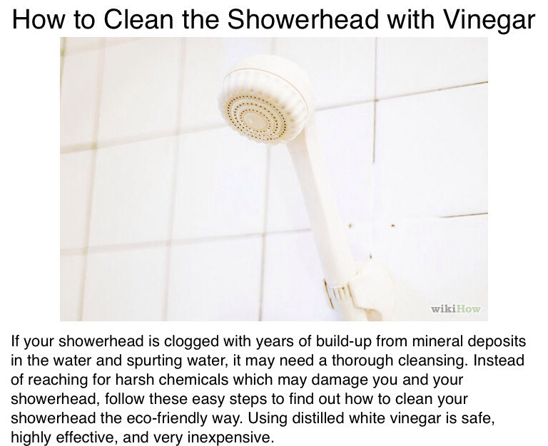 how to clean up a shower head