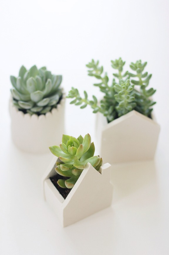 Roll the clay and cut into the desired shape. Press the different pieces together and bake in the oven. Use to plant succulents and small plants.