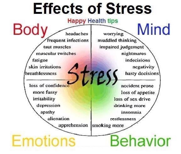 job stress and its impact on Routine stress related to the pressures of work, school, family and other daily responsibilities the effects of stress tend to build up over time.