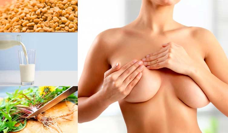 How To Grow Breast – Top Home Remedies by 💗Nunita Nice