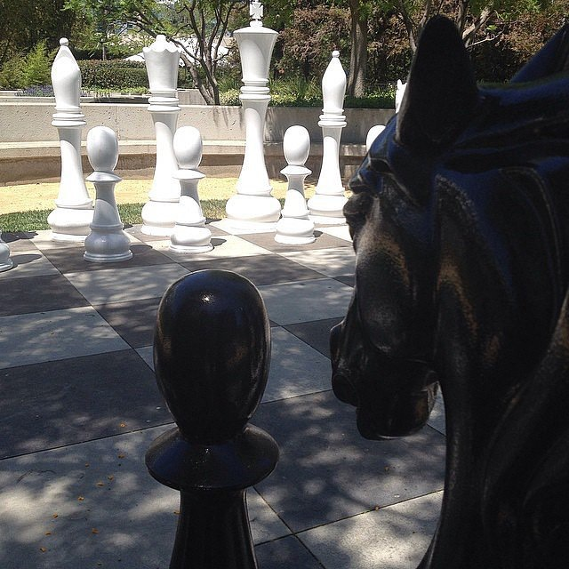40. Play life sized chess