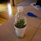 7. Self-Watering Insulated Tiny Greenhouse