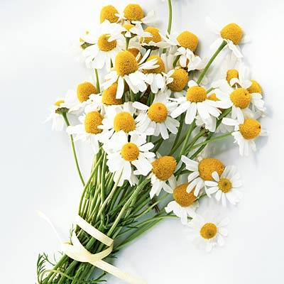 Lavender, chamomile, and neroli to ease stress A 2013 study of ICU patients published in the journal Evidence-Based Complementary and Alternative Medicine found that sniffing this combo significantly reduced anxiety.