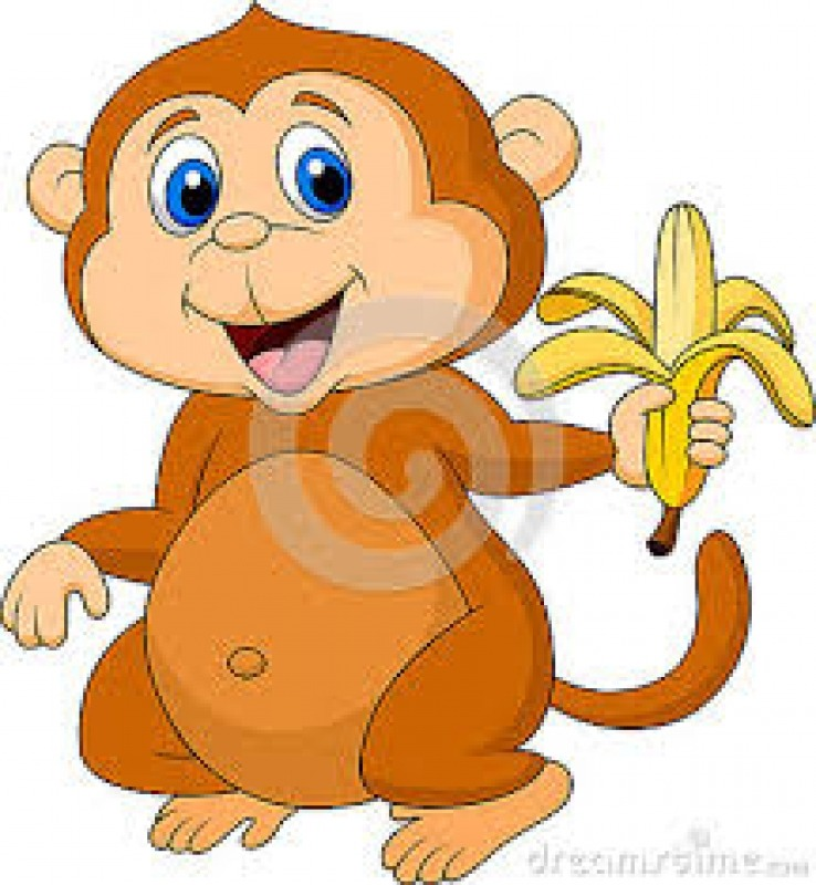 Monkeys have a secret to easy open, no fail way, to get to the banana!