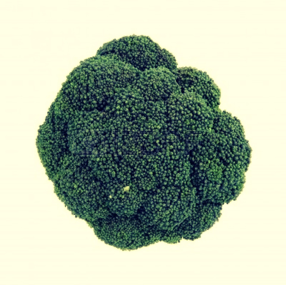 Purchase a large head of raw broccoli from your local grocery. Wash, and chop into small spears.