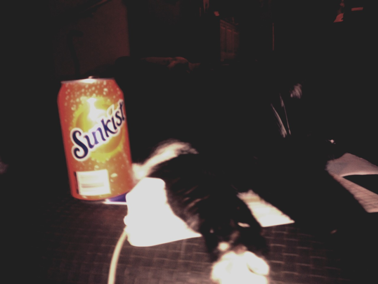 Just let the cat lay next to your drink and watch the magic!! Btw this does not acutely work it is just a joke!!!