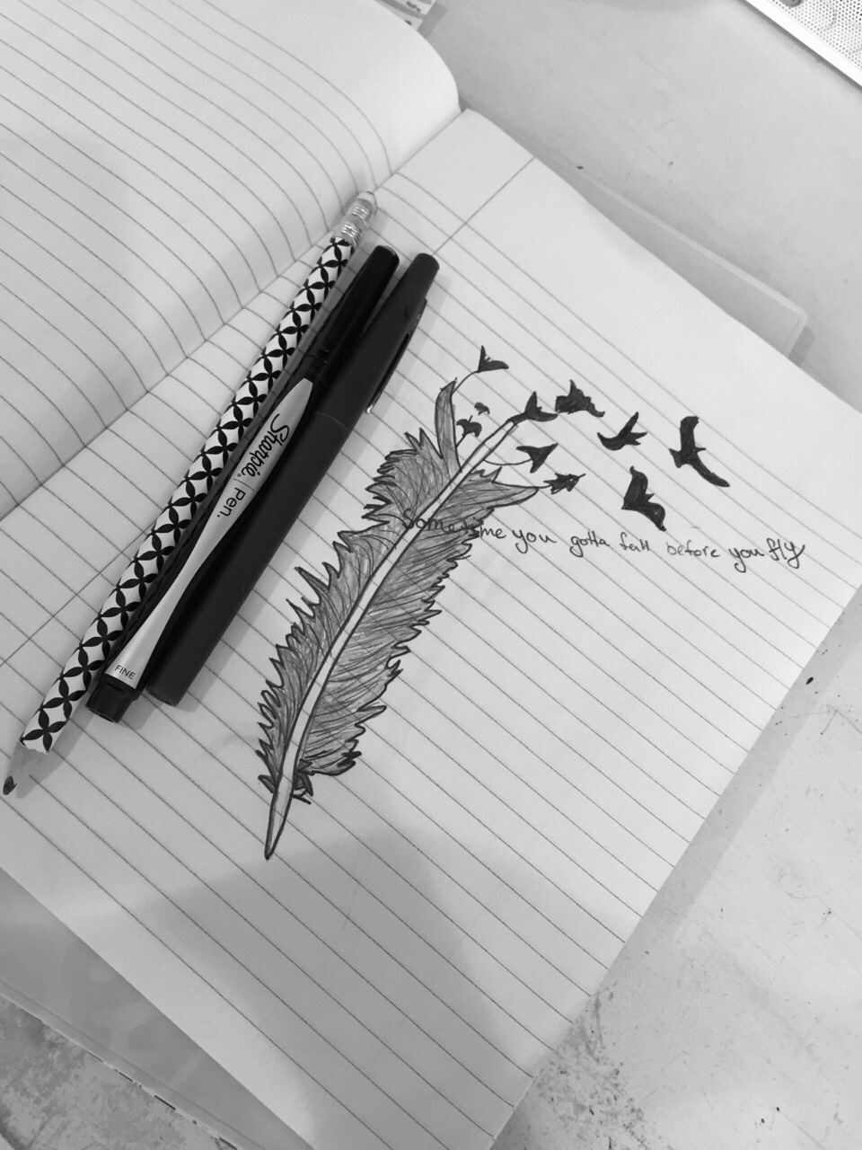 feathers, the quote is in blue// mine