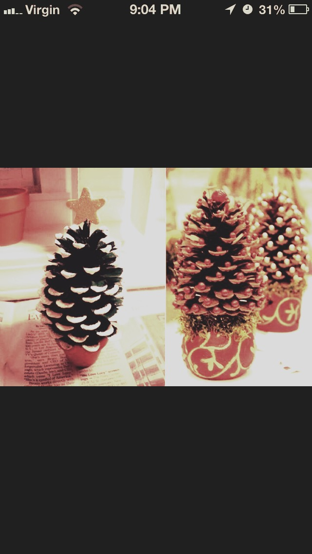 You will need:      1 pine cone     White paint     Glitter     Beads     Little pot or container To make: Take your mini pine cone and paint the end of each flap white. Once it dries, hot glue on the beads and add some glitter for a dash of color. Place in a small pot or container and  BAM! DONE