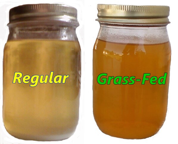 Regular butter vs grass-fed butter look at the difference.