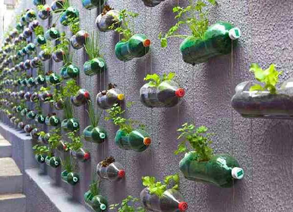 Vertical garden !!