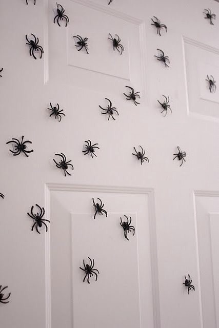 Spiders with magnets on the back