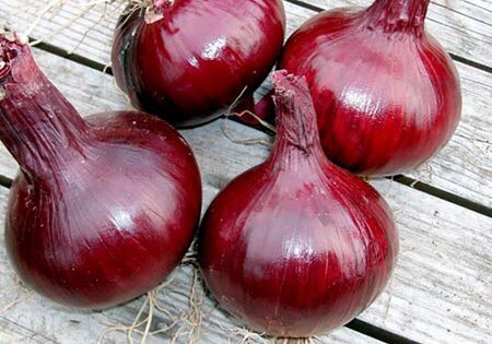 Remedy #3: try onion extract↠