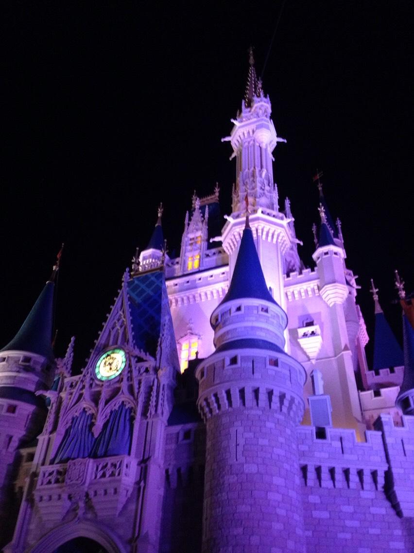 The Disney Castle at night🌠