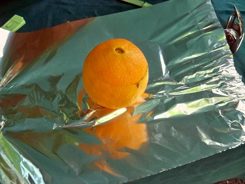 Put the tops back on and wrap the oranges with aluminum foil.