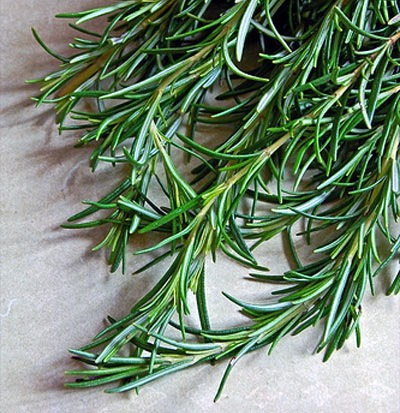 Hair Growth and Thickness: Place 1-2 drops of Rosemary Oil or Carrot Oil to your hairbrush before brushing your hair