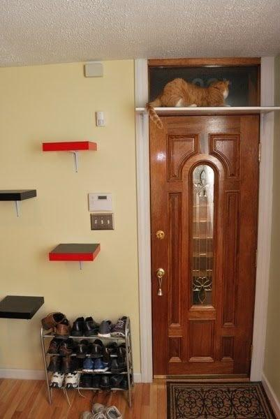 3. Create a stairway to heaven for your cat using Ikea Lack shelves.