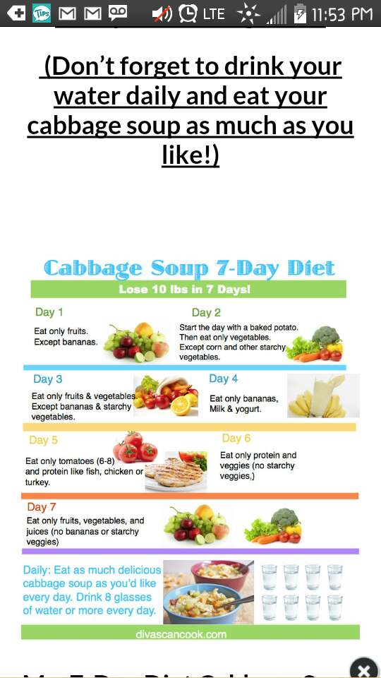 7 Day Weight Lost- The Cabbage Soup Diet by Julie Turner - Musely