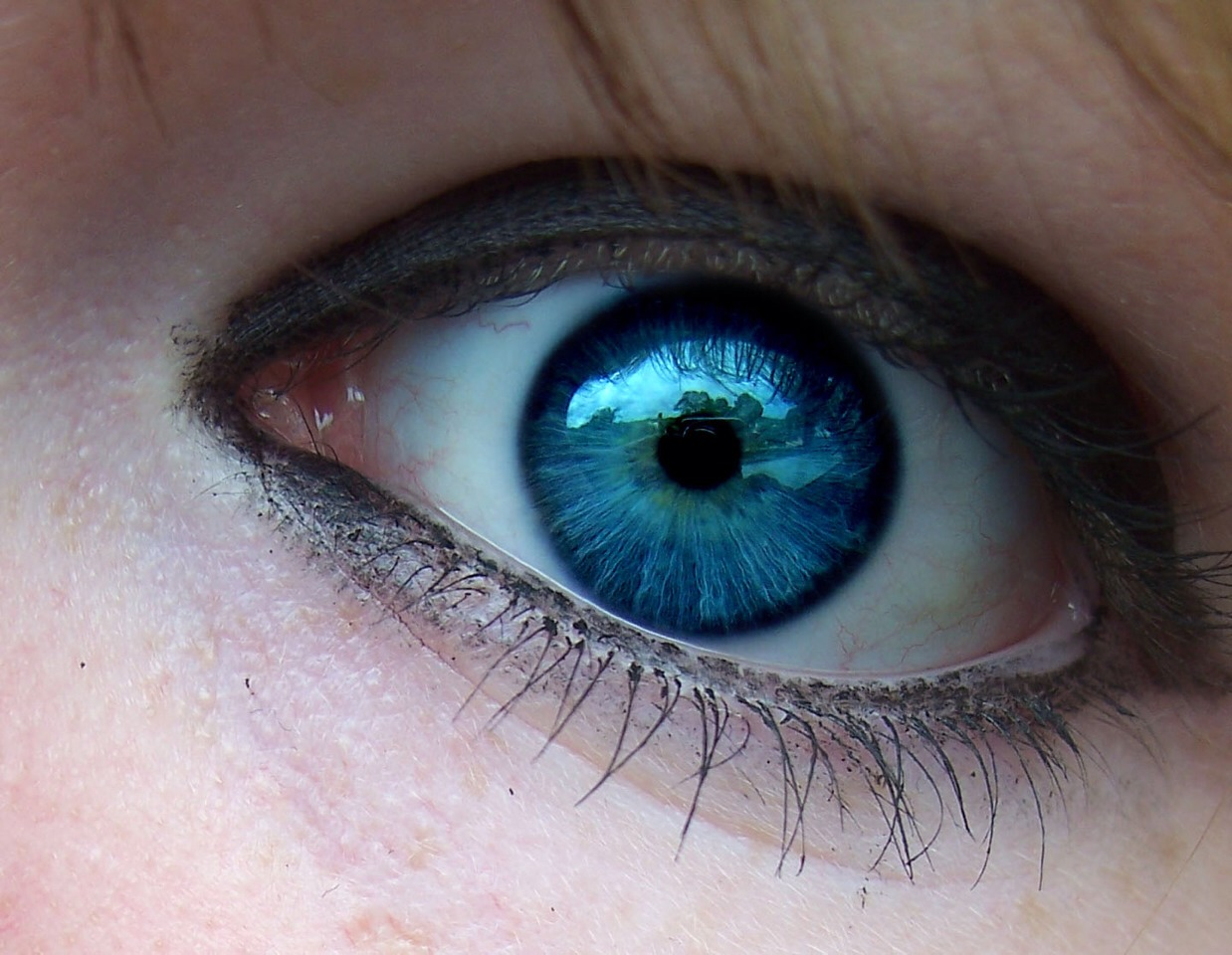 Blue eyes look best with, purple, grey, honey browns, and small hints of blue! These will make your eyes pop!