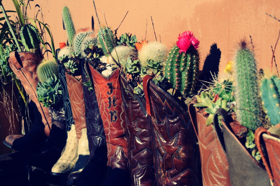 Fill your old cowboy boot with burlap, soil, and plant a cactus! Easy to maintain and it looks awesome too!