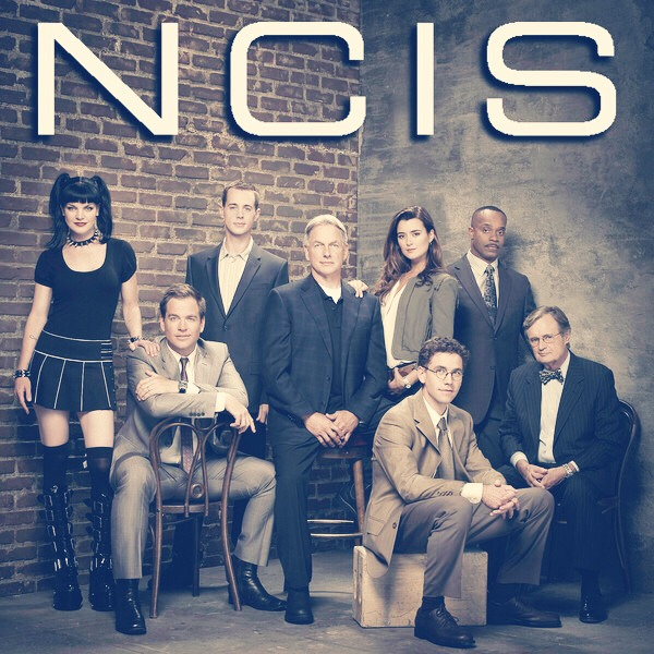 "The fourth series i recommend is ""Ncis"".  This series i recommend to people that like drama, action, suspense and a little romance."