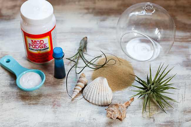 Supplies: • Some sort of container – I found these cool globes on clearance at Michael's. • Sand • Shells • 1-2 air plants • To get the beachy blue tint, you'll need gloss Mod Podge, blue food coloring and a 1/2 tablespoon of water