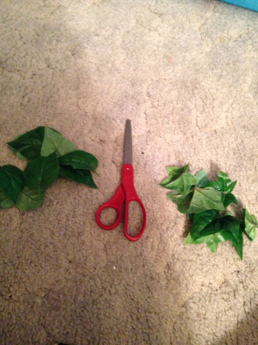 Cut the leaves of the bunches leaving about two cm of stem on each leaf. If you have more than one type of leaf separate into piles.