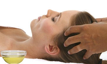 Massage your hair with the olive oil as much as all your hair is oily.
