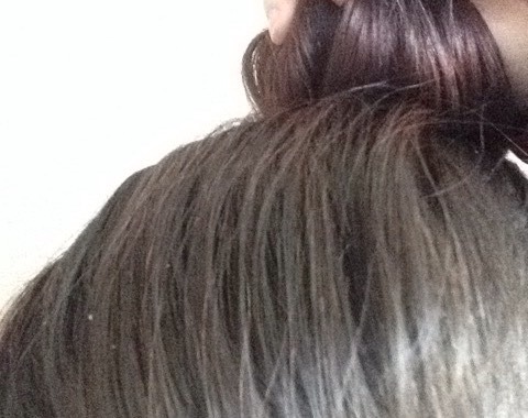 This is my hair after doing it a few times, as you can see my hair is quite red at the back and a dull natural brown at the front (sorry my camera wasn't great)